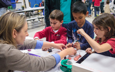 Update: 4th Annual AEA Family Science Night